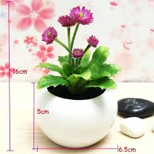 best plant for office desk best desk plants best desk plants for office the 25 best
