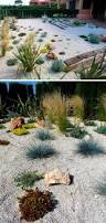 plants for rock gardens 11 inspirational rock gardens to get you planning your garden