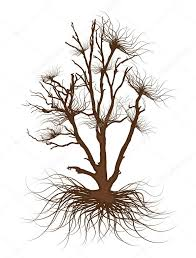 dead tree drawing vector u2014 stock vector baavli 64422033