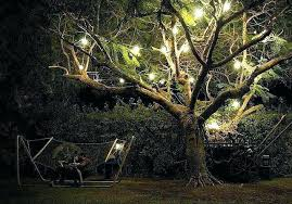 best led lights for outdoor trees outdoor lights for trees about home decor