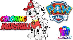 paw patrol coloring page marshall nickelodeon nick jr