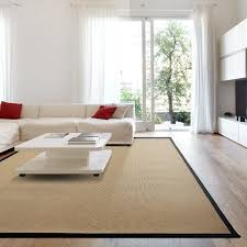 Hall Nice White Area Rug For Placed Modern Middle Room Design - Family room rug