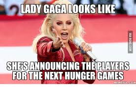 Hunger Game Memes - lady gaga looks like shersannouncing theiplayers for the next