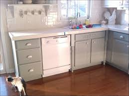 Kitchen Cabinets Chalk Paint by Kitchen Repainting Cabinets Painting Cabinets White Spraying