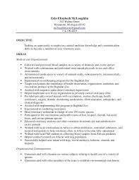 veterinary student resume best resume collection