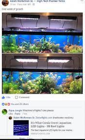 sb reef lights review sbox pro 32 timer fresh water plant sb reef lights