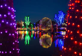 Toledo Zoo Christmas Lights by 100 Zoo Lights Cost Videos The Los Angeles Zoo Best 25 Zoo Lights