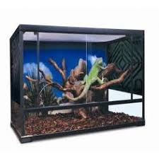 terrariums for frogs lizards reptiles for sale amazing amazon