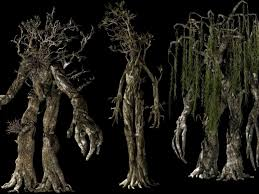 wallpaper of ents for fans of lord of the rings neverland