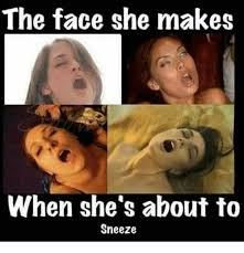 Sneeze Meme - the face she makes when she s about to sneeze meme on me me
