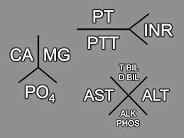 Fishbone Diagram Template Download by Bone Diagram Template Images