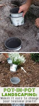 Garden Tips And Ideas 20 Insanely Clever Gardening Tips And Ideas Flowers Vegetables