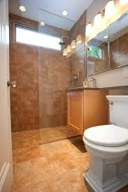 bathroom design nyc small nyc bathroom ideas gallery bathroom design apinfectologia