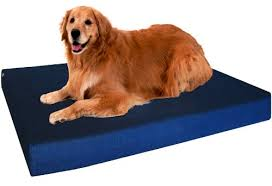 Memory Foam Dog Bed Dogbed4less Extra Large Orthopedic Memory Foam Dog Bed Waterproof