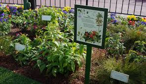 Types Of Botanical Gardens by Epcot International Flower And Garden Festival Gardens Part 1
