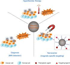 nanomaterials for cancer therapies nanotechnology reviews