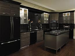 Black Kitchen Decorating Ideas Black Kitchen Shoise Com