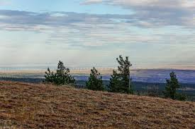 Wildfire Ranch by 18 000 Acre Washington Ranch Is For Sale At 17 Million The News