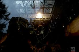 Stone Zoo Lights by Animals Still In Cages A Year After Buenos Aires Zoo Closure U2014 Ap