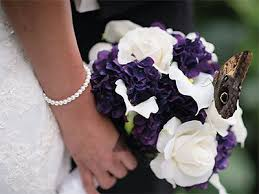 wedding reception venues denver 738 best denver wedding venues images on wedding