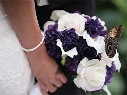wedding reception venues denver co 738 best denver wedding venues images on wedding