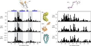 a molecular mechanism of chaperone client recognition science