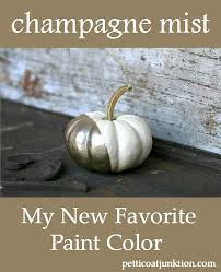 champagne paint color and white pumpkins