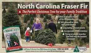 north carolina christmas tree association home facebook