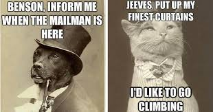 Benson Dog Meme - vintage pet memes are turn of the century hilarious