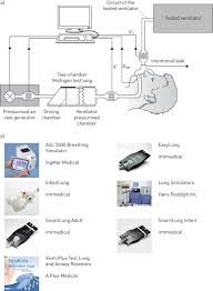 technology for noninvasive mechanical ventilation looking into