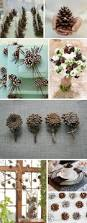 i especially like the pinecone flowers four in a row big picture