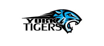 20 creative tiger logo designs for your inspiration logo