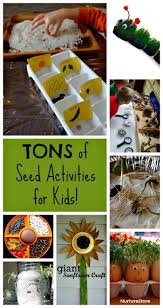 27 best gardening with kids images on pinterest
