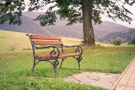 park bench free pictures on pixabay