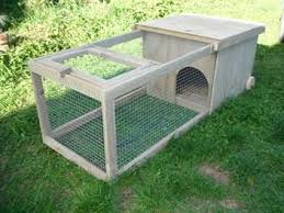 Rabbit Hutch With Run For Sale 150 Best Rabbits Images On Pinterest Rabbit Cages Rabbit