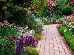 Plant Flower Garden - best 20 garden types ideas on pinterest strawberry plants