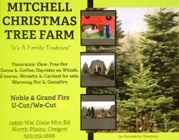 mitchell christmas tree farm home facebook