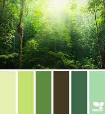 happy green color 2685 best color my world images on pinterest color palettes color