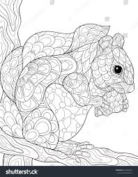 coloring page squirrel art style stock vector 616962812