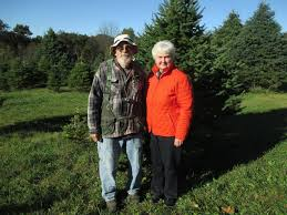 dollinger christmas tree farm dollinger tree farm home