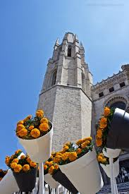 foto friday girona u0027s temps de flors a nerd at large my