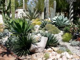 cactus garden designs home interior design ideas home renovation