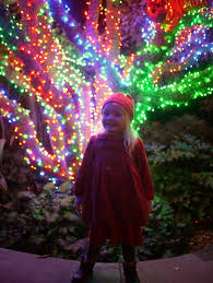 Zoo Lights Oregon by Little Hiccups December 2013