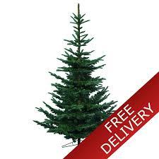 everlands 6ft nobilis fir artificial tree green
