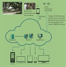tree mis caring for ecological assets in smart cities