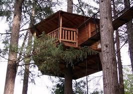 out u0027n u0027about treehouse treesort
