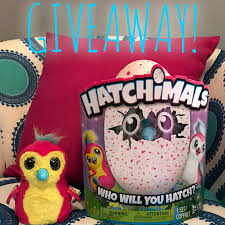 target black friday panamacityfl hatchimals in stock here is how we found our hatchimals i am