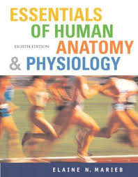 Human Anatomy And Physiology Marieb 5th Edition Isbn 9780805373271 Essentials Of Human Anatomy And Physiology
