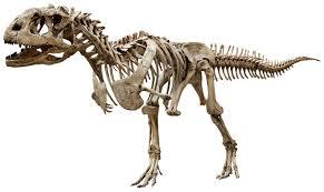the atlantean conspiracy dinosaur hoax dinosaurs never existed