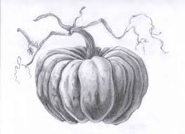 pumpkin sketch images reverse search